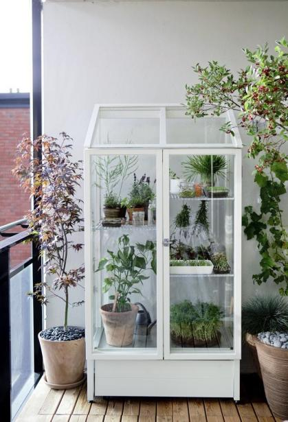 "The Finnish gardening supply company Kekkilä sells the ""Odlingsvitrin"" cabinet (which the company translates as ""Green Vitrine"") 