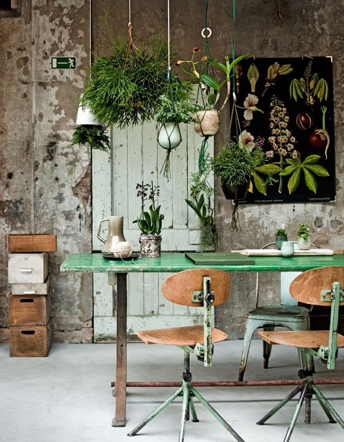 These Hanging Planters Add A Bit Of Life To This Rustic Industrial Dining  Setup! Styled