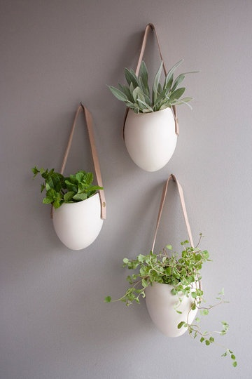 Love these handmade porcelain wall planters with their leather straps and brass screws designed by Farrah Sit via Etsy | http://www.etsy.com/listing/83144130/set-of-3-porcelain-and-leather-hanging