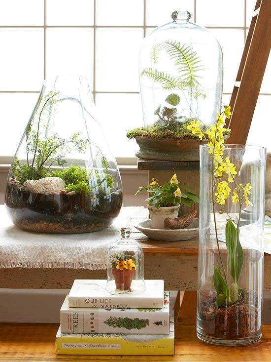 Plants & Planters ǀ The Design Tabloid (6)