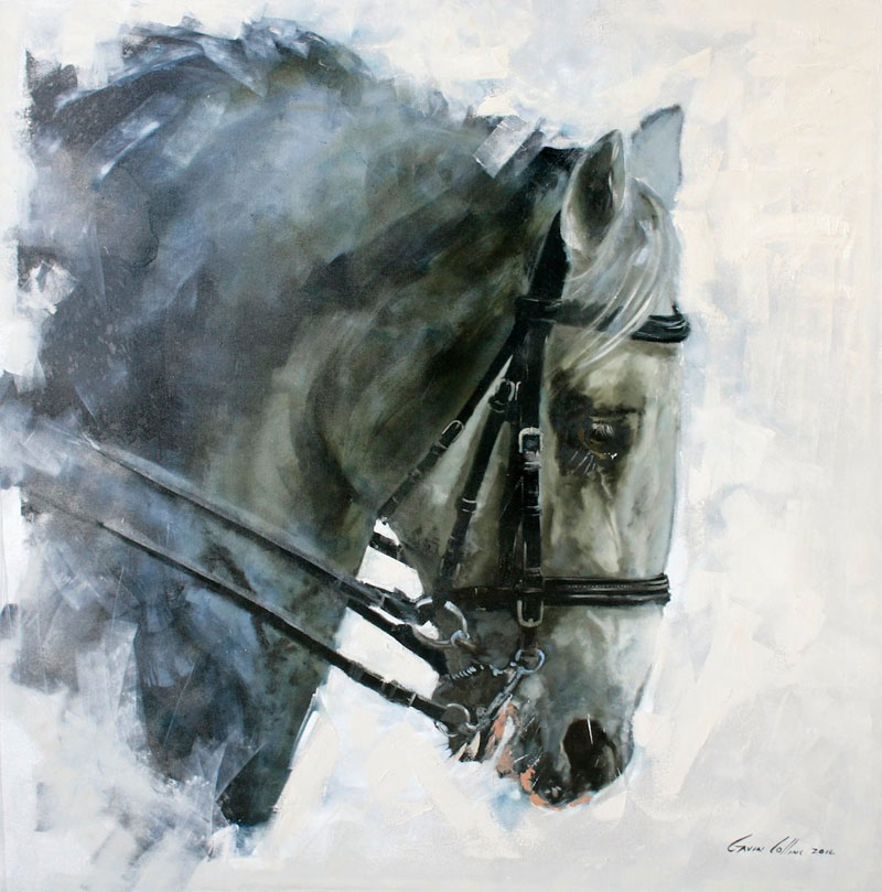 """Lipizanner Stallion"" by Gavin Collins"