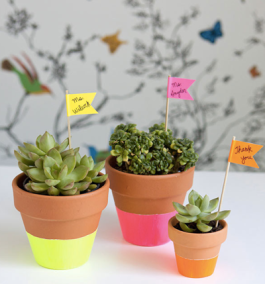 What a cute idea - neon dipped potted plants as trendy gifts | via http://www.hellobee.com/2012/06/01/neon-dipped-teacher-gifts/