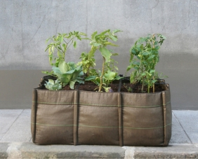 BACSAC Planter Bag (5)
