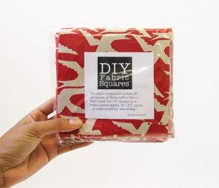 Skinny laMinx - DIY Fabric Squares (2)