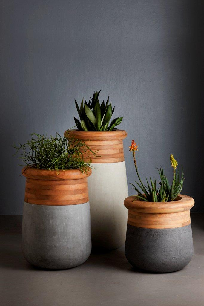 Soma planter collection by Laurie Wiid.