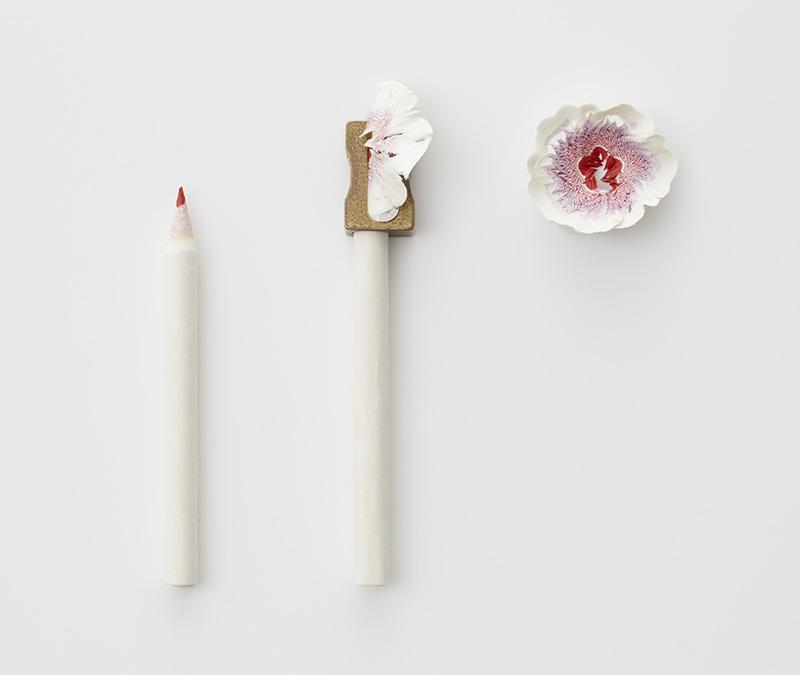 Paper Flowers by Haruka Misawa