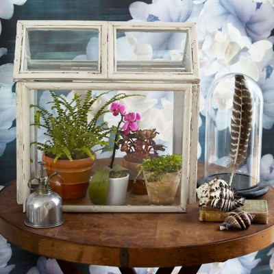 Decorating Quick Tip | Picture Frames Turned Terrarium